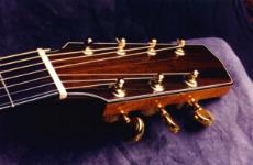 Custom 7-string headstock