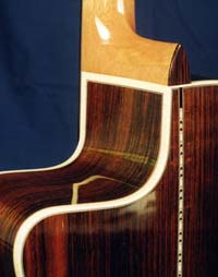 Cutaway detail, Maple bindings
