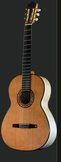 Full view of the Flamenco guitar